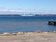 <h5>Verdens største containerskib sejler forbi Ålsgårde</h5>