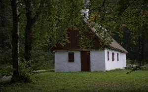 Anes hus