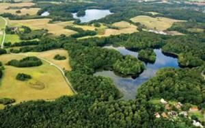 Kohaven er et åbent, græsdækket areal på ca. 290 ha.